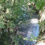 Fiume Monticano